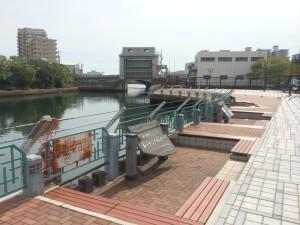H26兵庫運河③